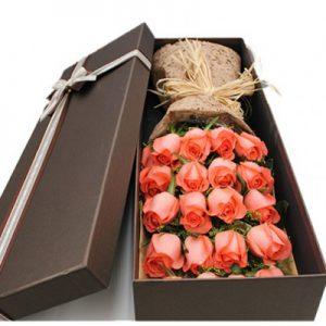جعبه خوابیده گل رز