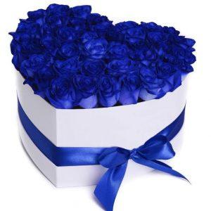 جعبه گل رز آبی