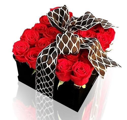 جعبه گل رز هلندی قرمز