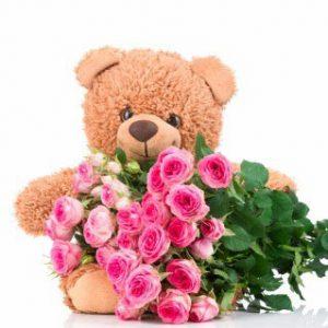 ۲۰ شاخه رز صورتی + عروسک خرس تدی
