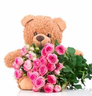 20 شاخه رز صورتی + عروسک خرس تدی