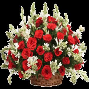 سبد گل برای تبریک