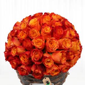 سبد گل رز نارنجی