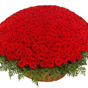 سبد گل سرخ