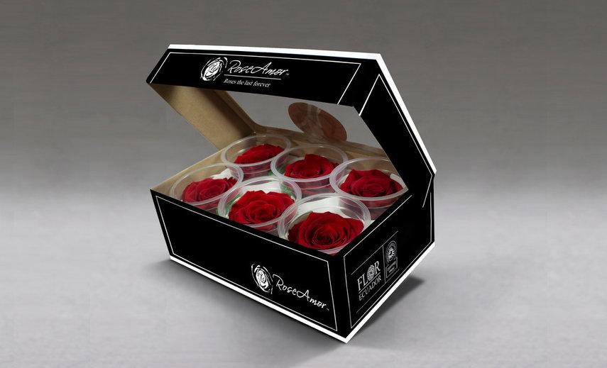 فروش گل رز جاودان به صورت عمده