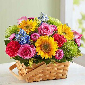 سبد گل باغ آفتابی ( ارسال به کانادا )